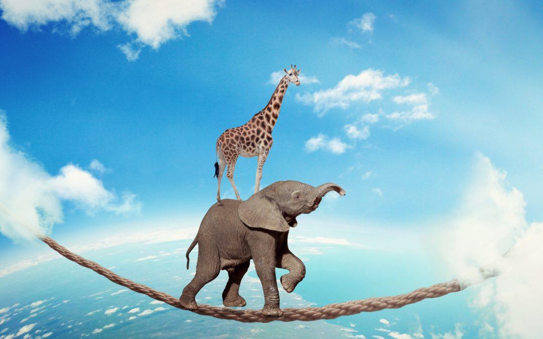 عوامل مؤثر بر تعهد و تعلق کاری